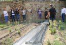 """Culminan curso de """"Agricultura Urbana"""" en IMM de Tlaxcala"""