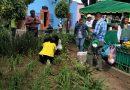 Realizan campaña de plantación de bambú en la capital