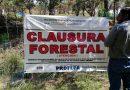 Clausura Profepa obras y actividades por cambio de uso de suelo  en terreno forestal en Tlaxco, Tlaxcala