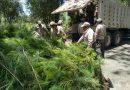 Reforestará CGE Parque Nacional Malinche con 500 mil árabes