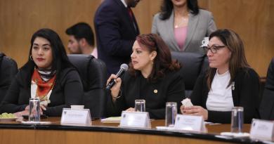 Conmina Diputada Federal Claudia Pérez a Gobernadores a dar respuesta real en delitos que atentan contra las mujeres