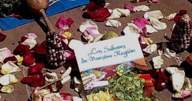 El 29 de mayo cierra en Tlaxcala Convocatoria PACMYC 2020: ITC