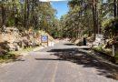 Se mantendran cerradas áreas naturales protegidas del estado: CGE