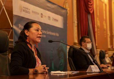 Gobierno de México erogará 300 mdp anuales a través de Sembrando Vida en Tlaxcala
