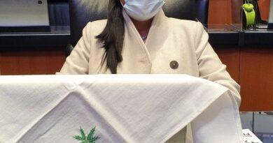 """Regular marihuana influye en salud pública"": Ana Lilia Rivera"